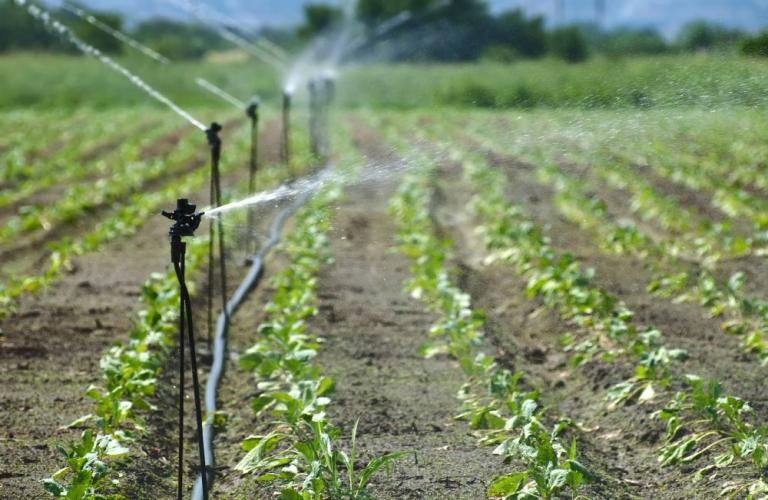 Smart Agriculture Market Size to Reach USD 29 Billion by 2027: Study