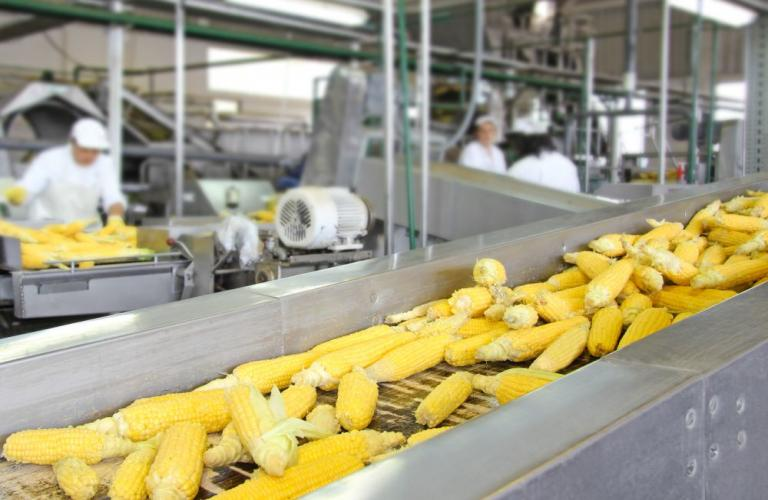 Value addition of agri produce essential to increase export competitiveness: APEDA