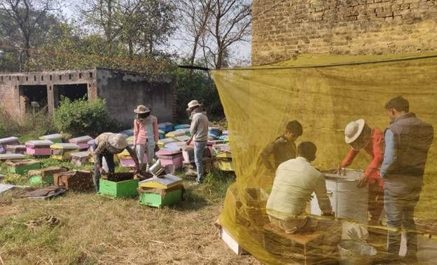 Khadi's Honey Mission begins generating income for migrant workers