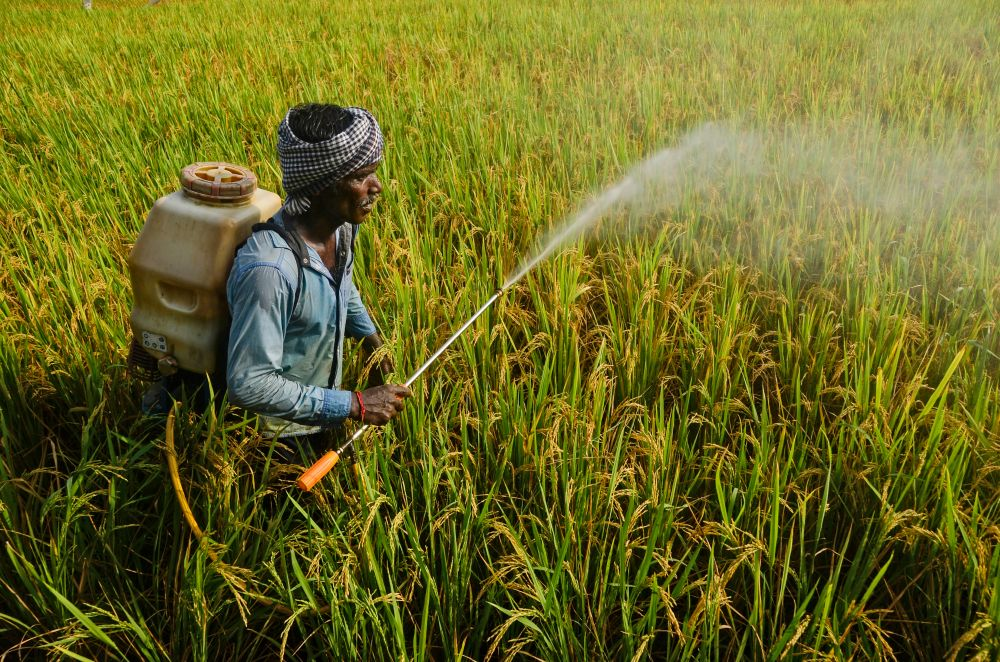 11 Most important government schemes in agriculture sector (Representative image: Shutterstock)