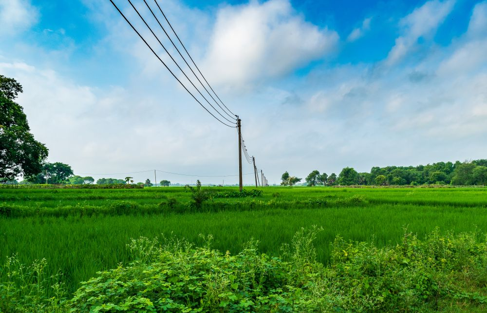 ADB, India sign $300 mn loan to upgrade rural power distribution in UP (Representative Image: Shutterstock)