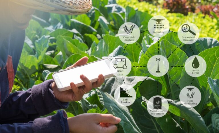 National e-Governance Plan in Agriculture aims rapid agri development through ICT