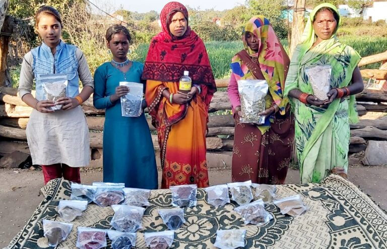 TRIFED: Creating digital marketplace for tribal villages