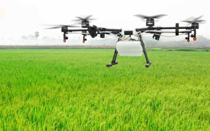 Centre appoints agritech companies to conduct CCEs under PMFBY (Representative Image: Shutterstock)