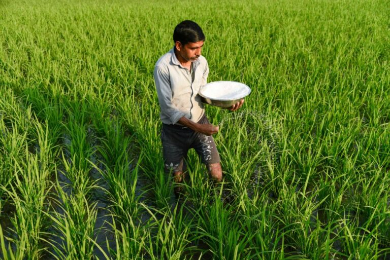 CCEA approves subsidy policy for urea produced through coal gasification by Talcher Fertilizers