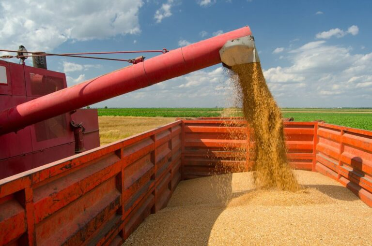 Cabinet approves modifications in Agriculture Infrastructure Fund (AIF)