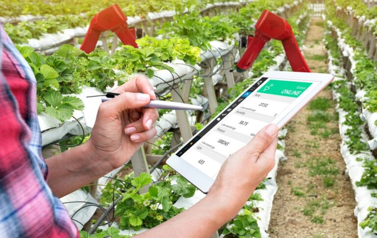 Office of Principal Scientific Advisor & KVKs partner to make agritech accessible for farmers
